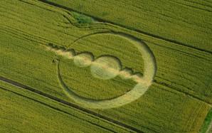 crop-circle-du-9-juin-2013-italy