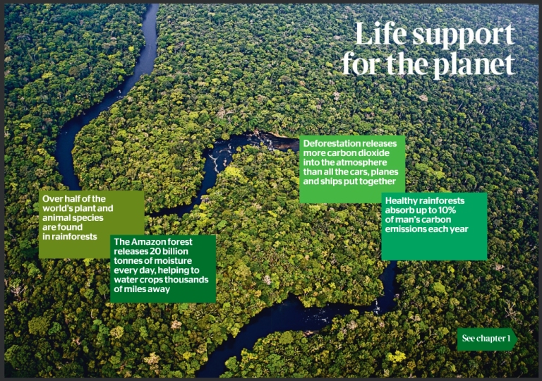 Life+Support+for+the+planet