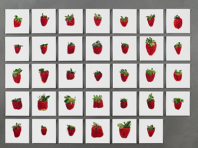 One-Pound-of-Strawberries-Hans-Peter-Feldmann