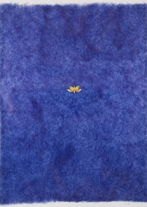 201_20120210-FABRE-insecte-1989-WL-DANCING-HOUR-BLUEL300