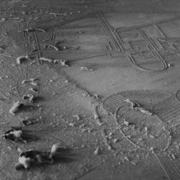 Man Ray, Elevage de poussière (sur le Grand verre de Duchamp), 1920