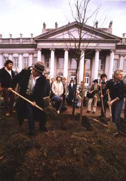 Beuys plante le 1er chêne
